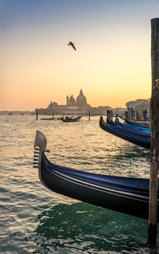 The Venice Lagoon and Gondolas