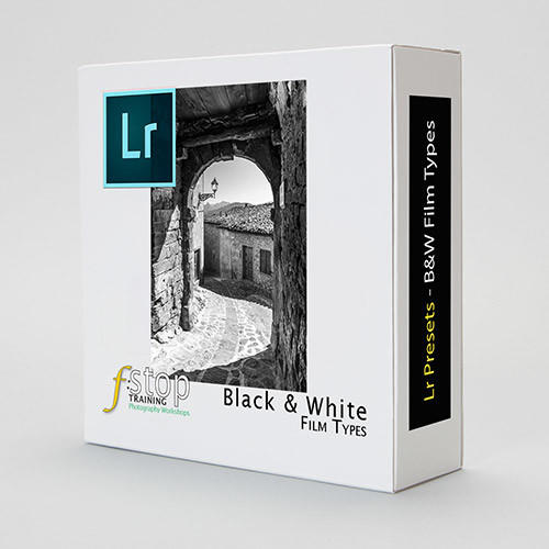 Lightroom Presets - B&W Film Types