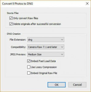 Convert Raw Files to DNG