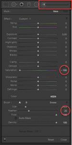 Brush Tool settings