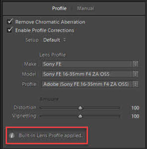 Lens Profile Correction Info icon