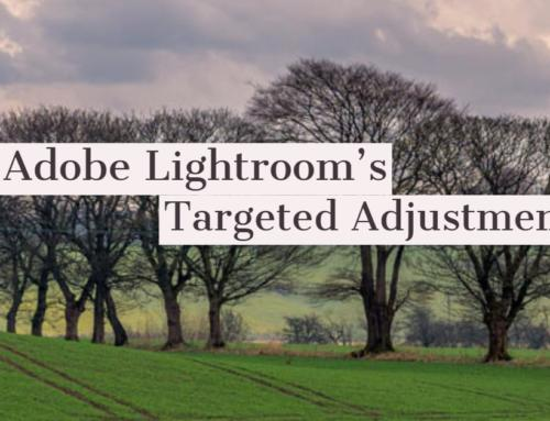 Targeted Adjustment Tool in Adobe Lightroom