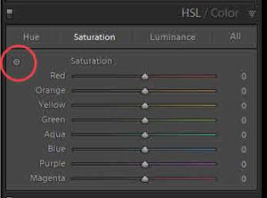 Targeted Adjustment Tool - HSL Panel