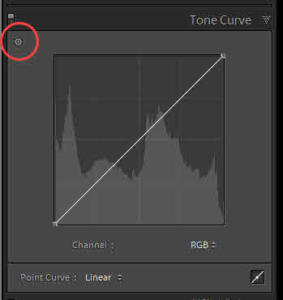 Targeted Adjustment Tool - Tone Curve
