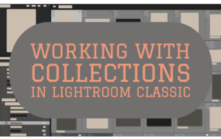 Working with Collections in Lightroom Classic